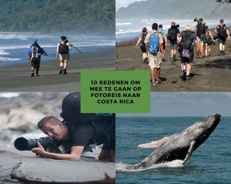10 redenen om mee te gaan op fotoreis naar costa rica
