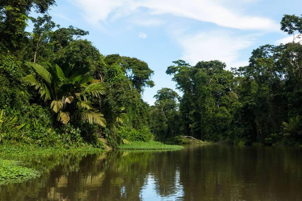 costa rica of panama tortuguero