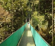 Wandelen over de Hanging Bridges bij de Arenal in Costa Rica