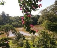 Geniet van de natuur in Belize.