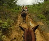 Paardrijden Costa Rica.