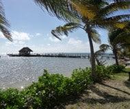 Ambergris Caye, rondreis Belize.