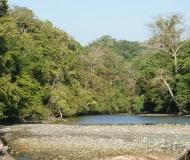 Nationaal Park Corcovado, rondreis Costa Rica, Unico Travel