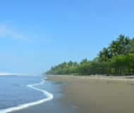 dominical costa rica