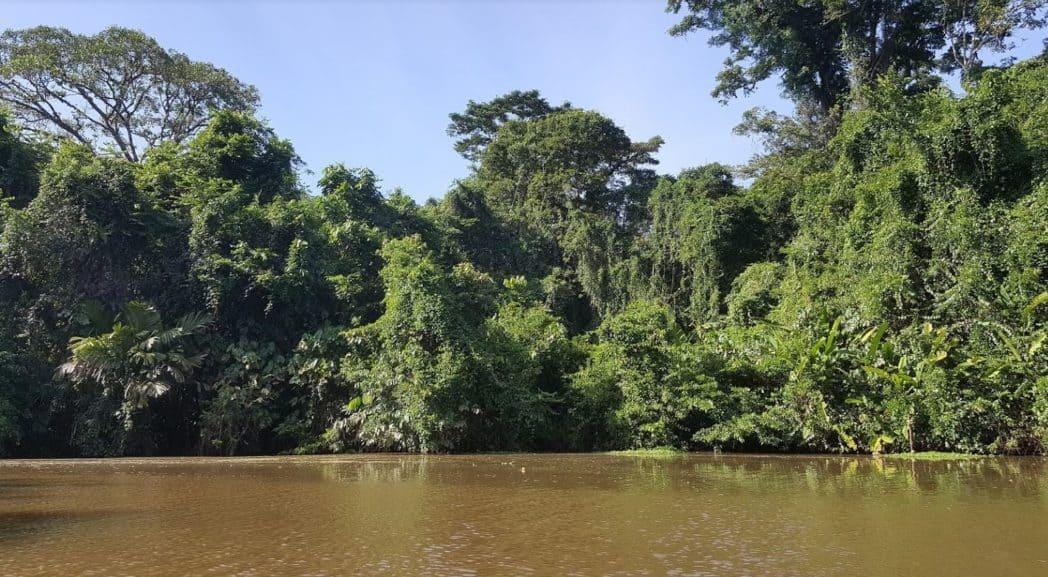 Tortuguero kanalen