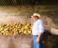 Suchitoto luxe reis El Salvador