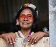 Amazone culturen
