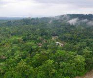 Amazone Ecuador