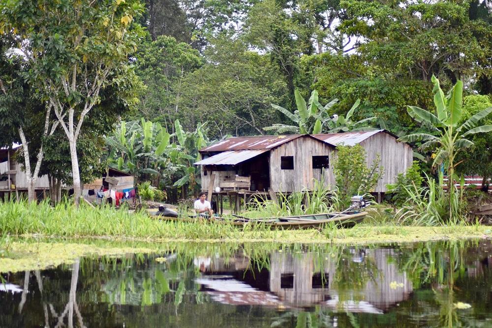 Amazone Colombia (foto Barbara) 228