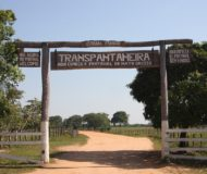 Transpantaneira - weg door de Pantanal