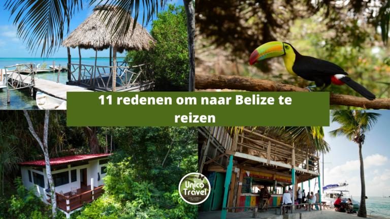 11 redenen Belize reis