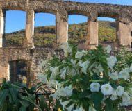 Boven bij de ruïne van Beilstein