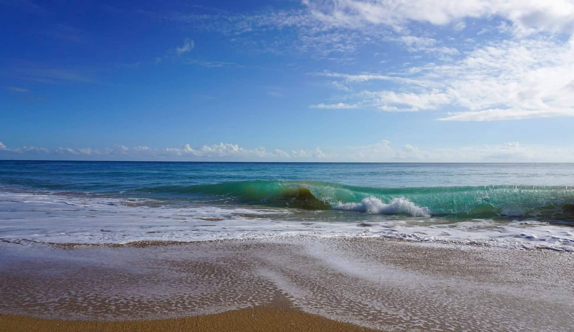 carribean sea (foto van TBH)