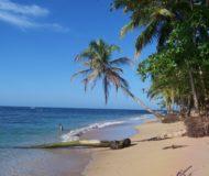 Caribische kust