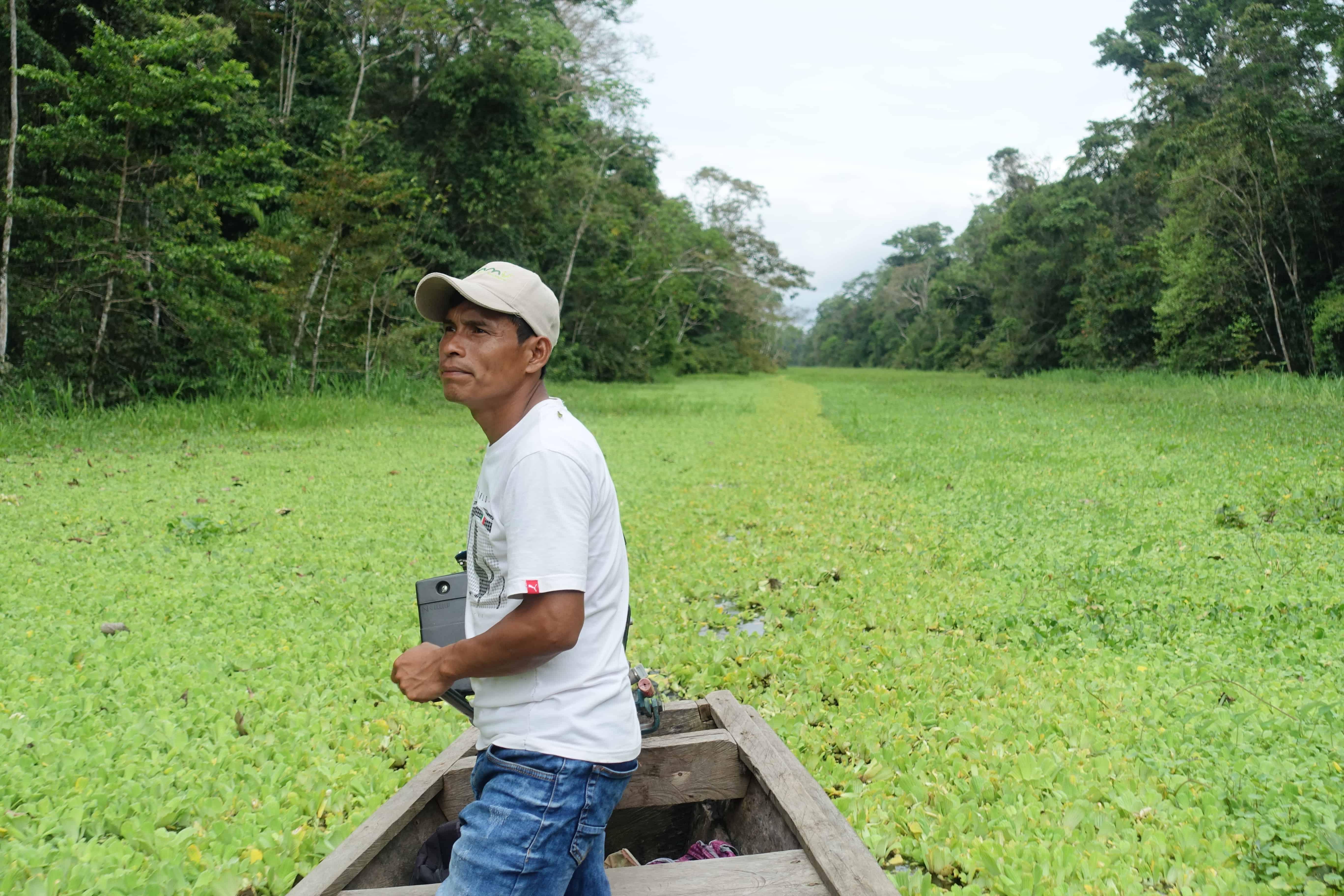 Colombia reis Amazone