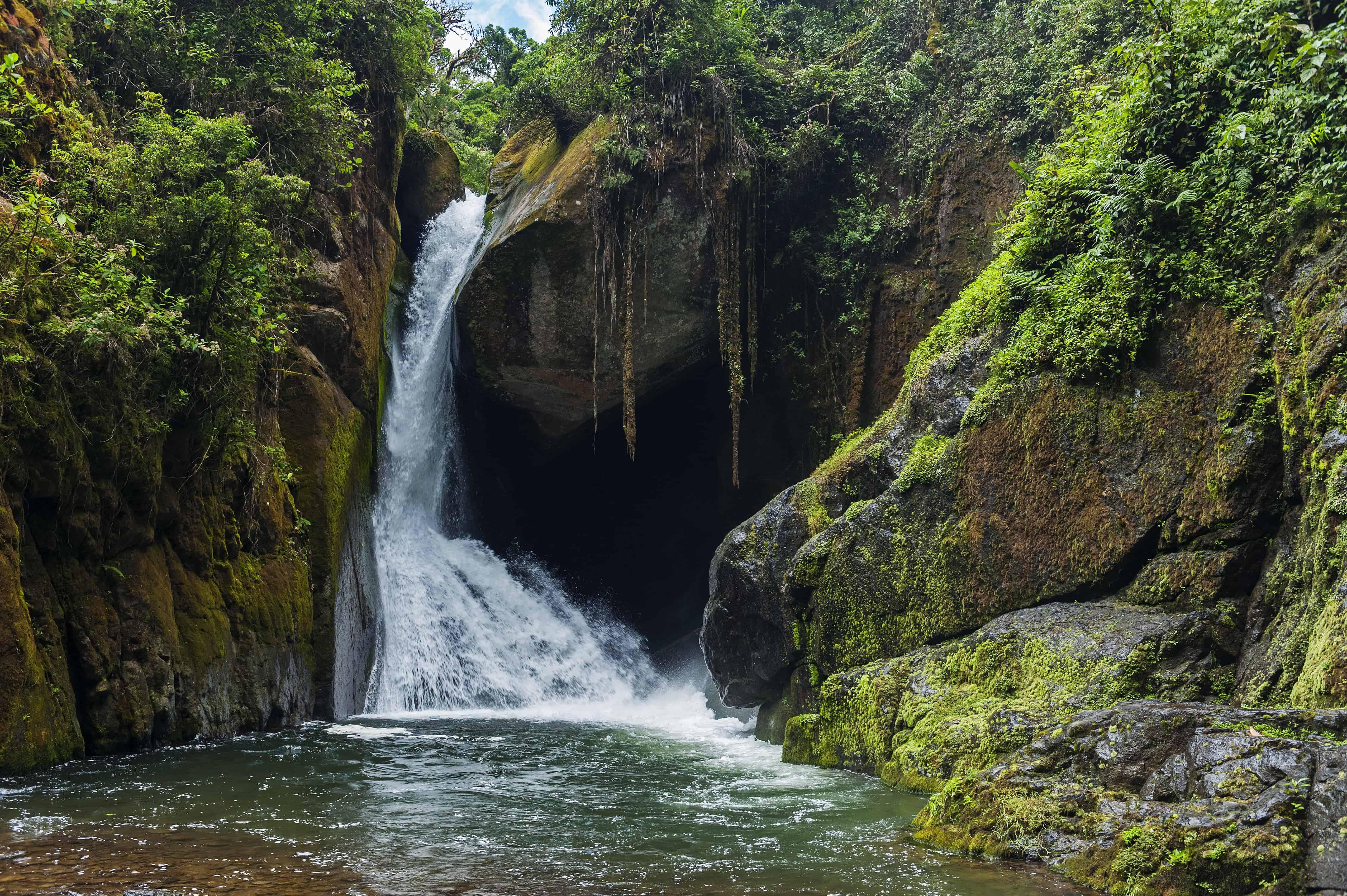 Costa Rica San Gerardo de Dota