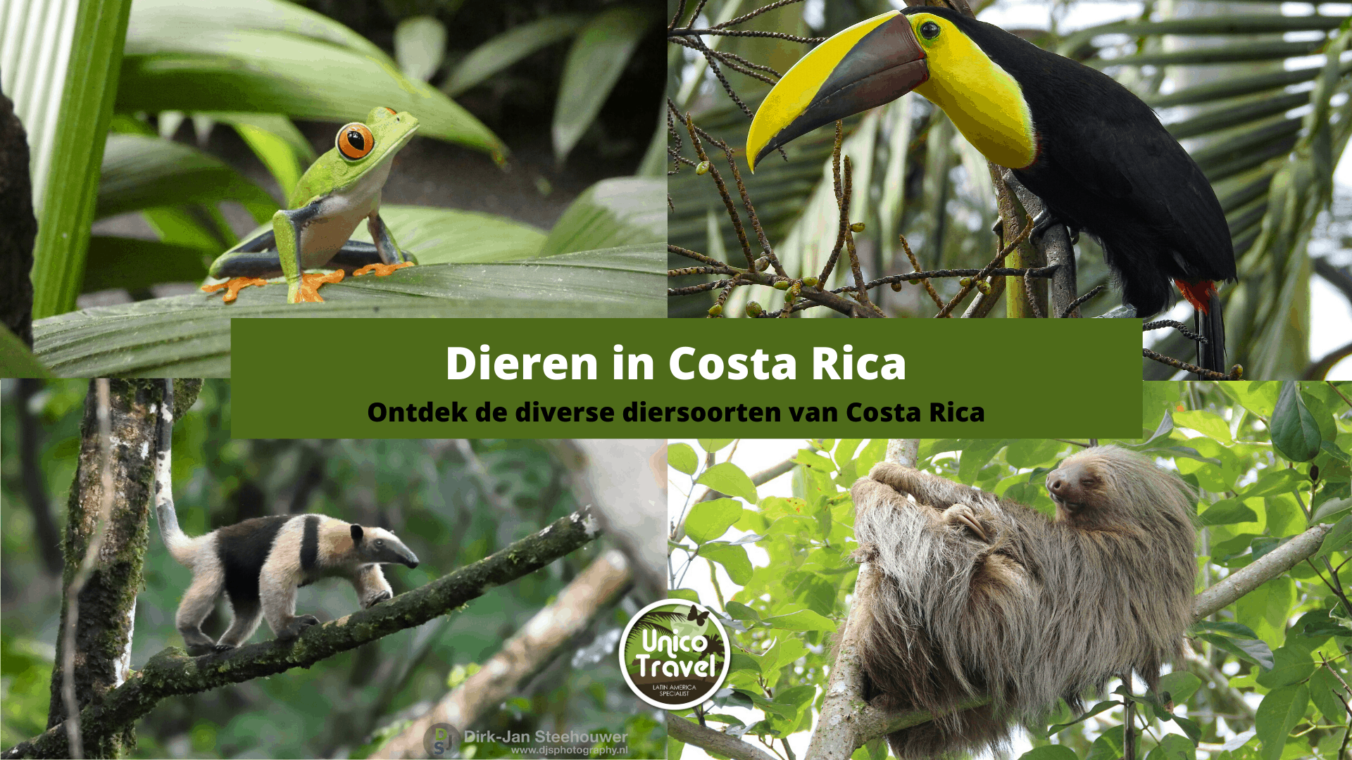 Costa Rica en diersoorten