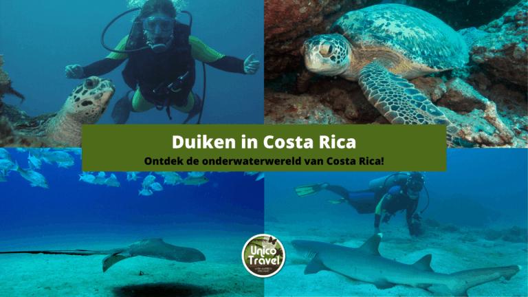 Duiken in Costa Rica 66