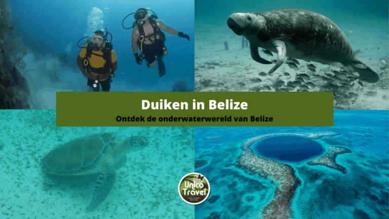 Duikreis in Belize
