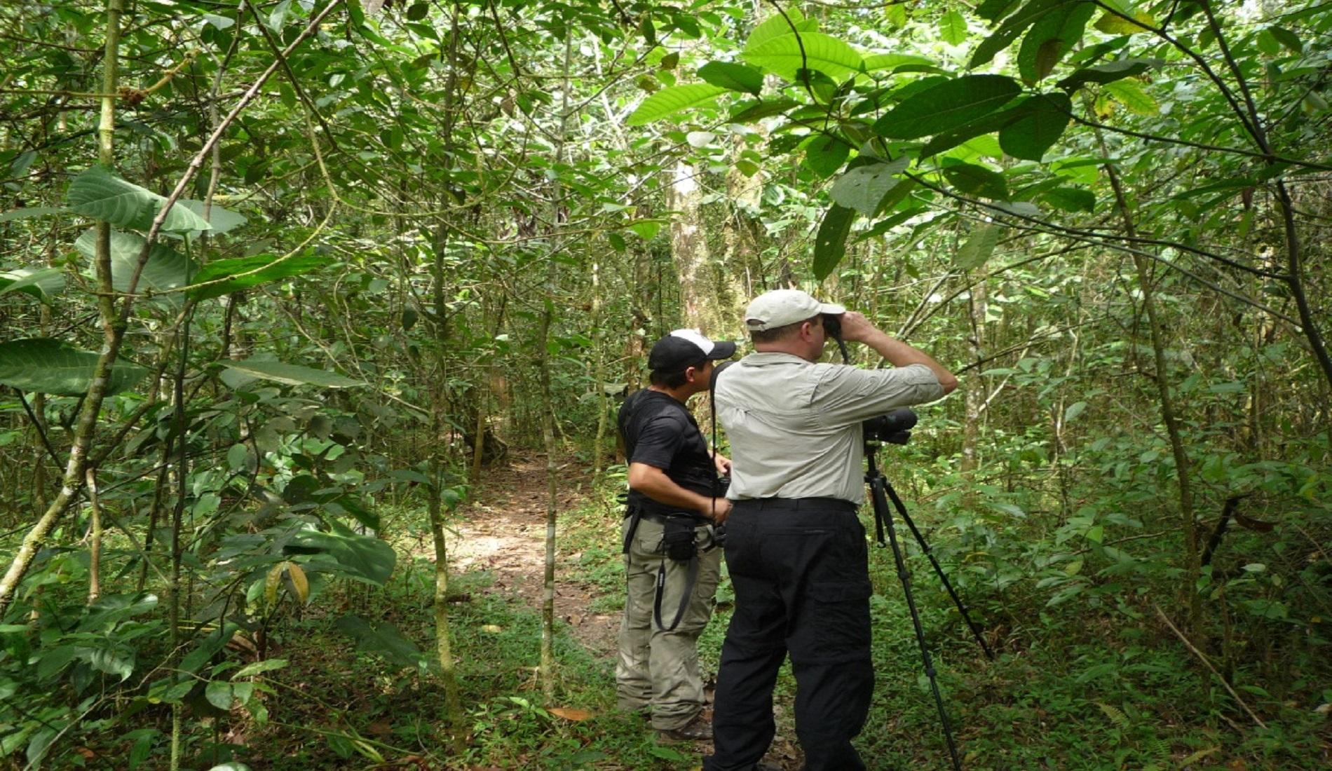 El Tabacal vogelreis colombia