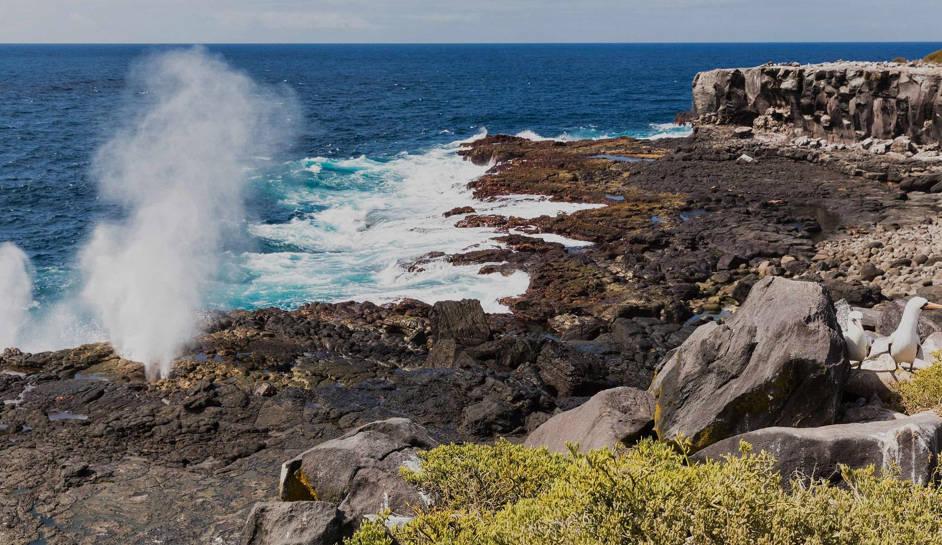 Española Suarez Point rondreis galapagos eilanden