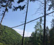 Hangbrug Geierlay vanaf de onderkant