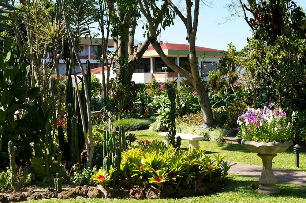 Hotel Bougainvillea tuin