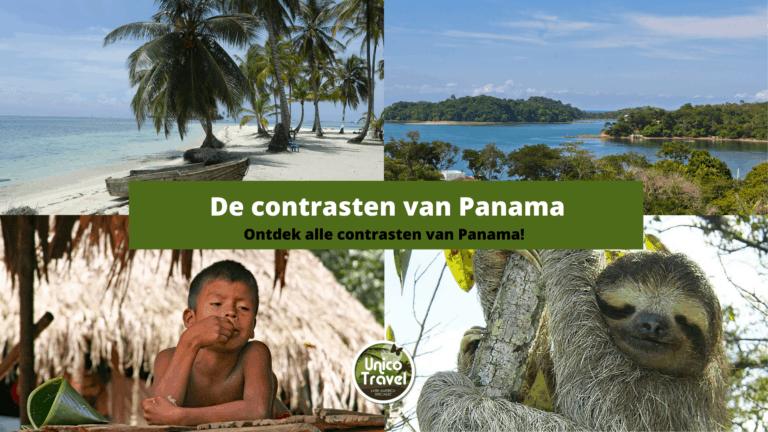 Kopie van contrasten van panama