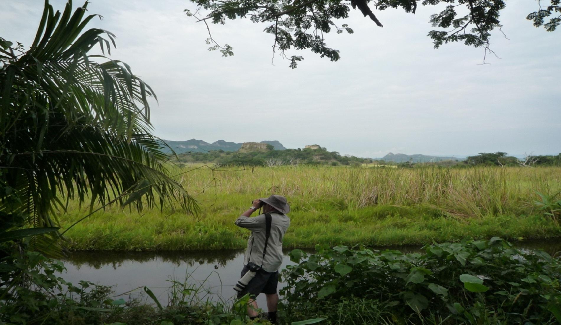 Laguna del Hato vogelreis colombia