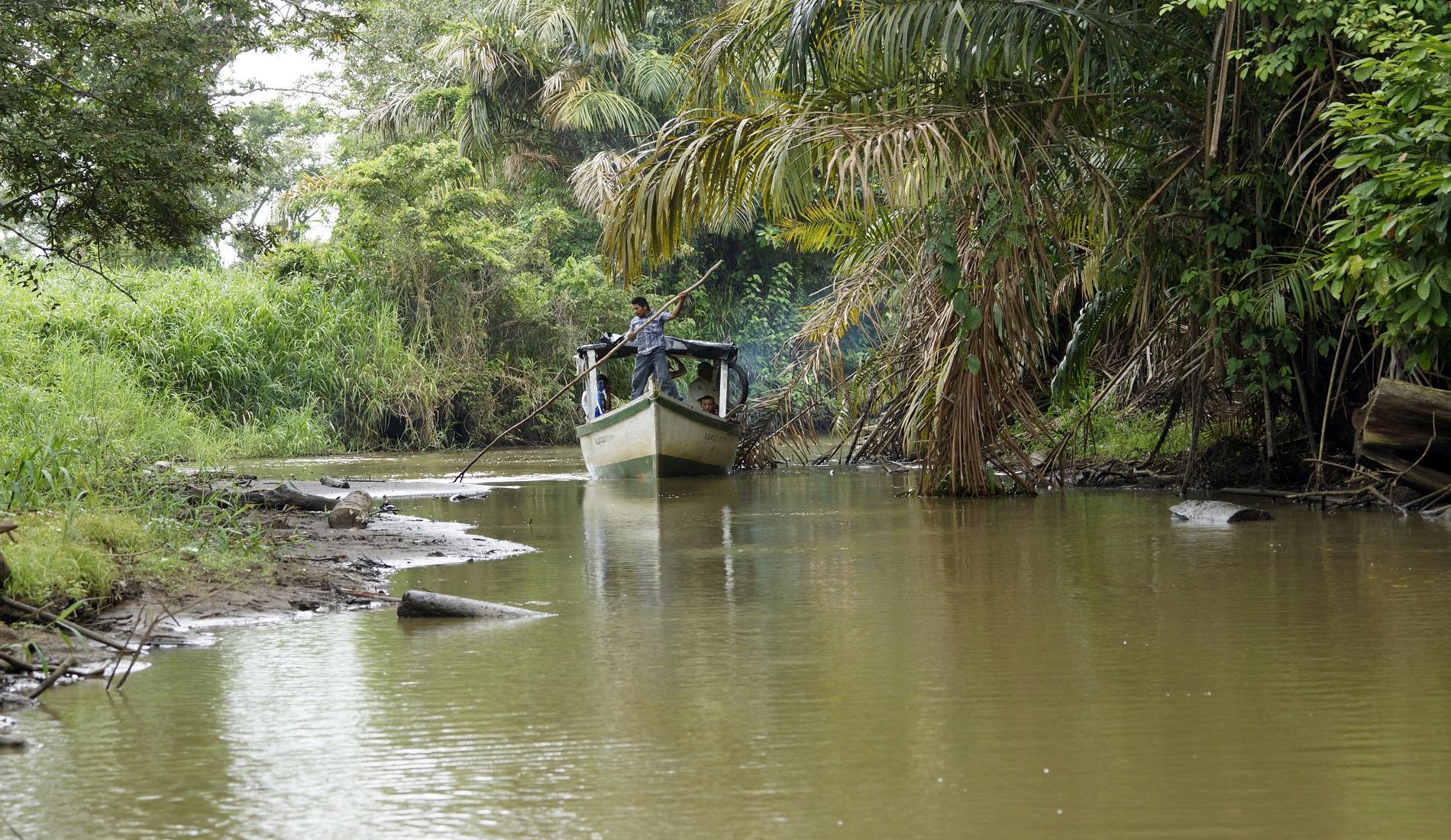 regenwoud nicaragua los guatuzos