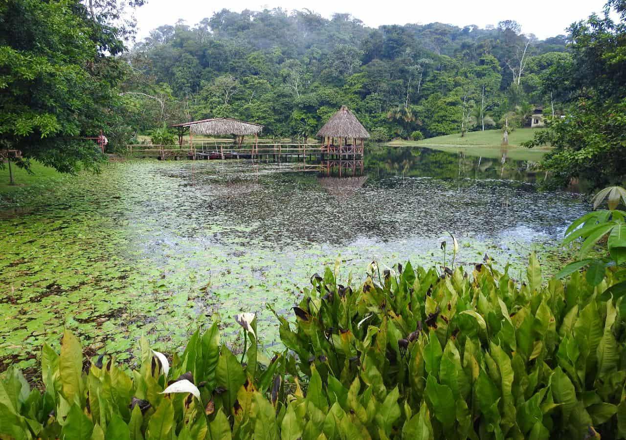 Luxe reis Costa Rica Boca Tapada regenwoud