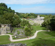 Omgeving Palenque