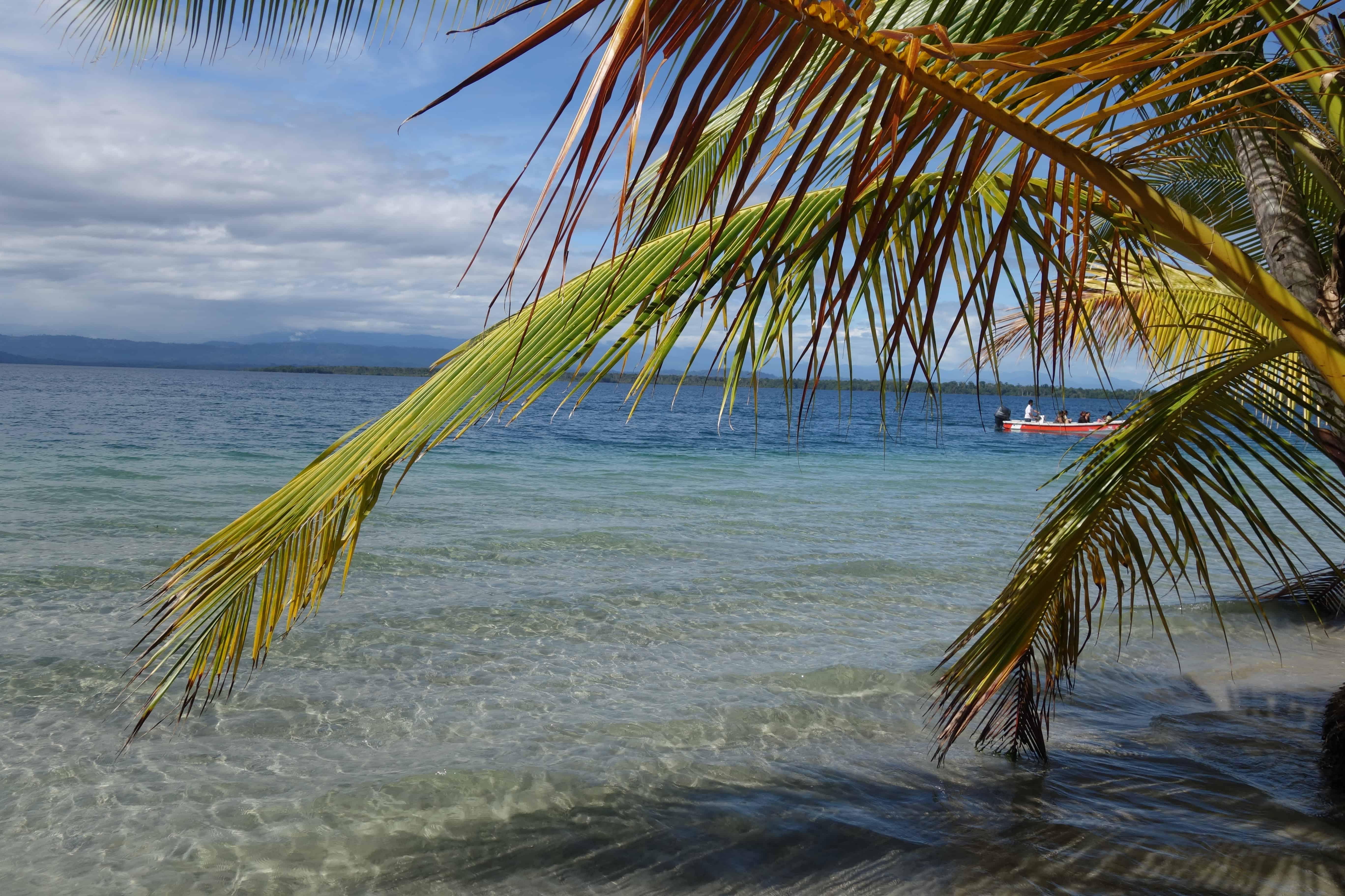 Panama reizen Starfish Beach