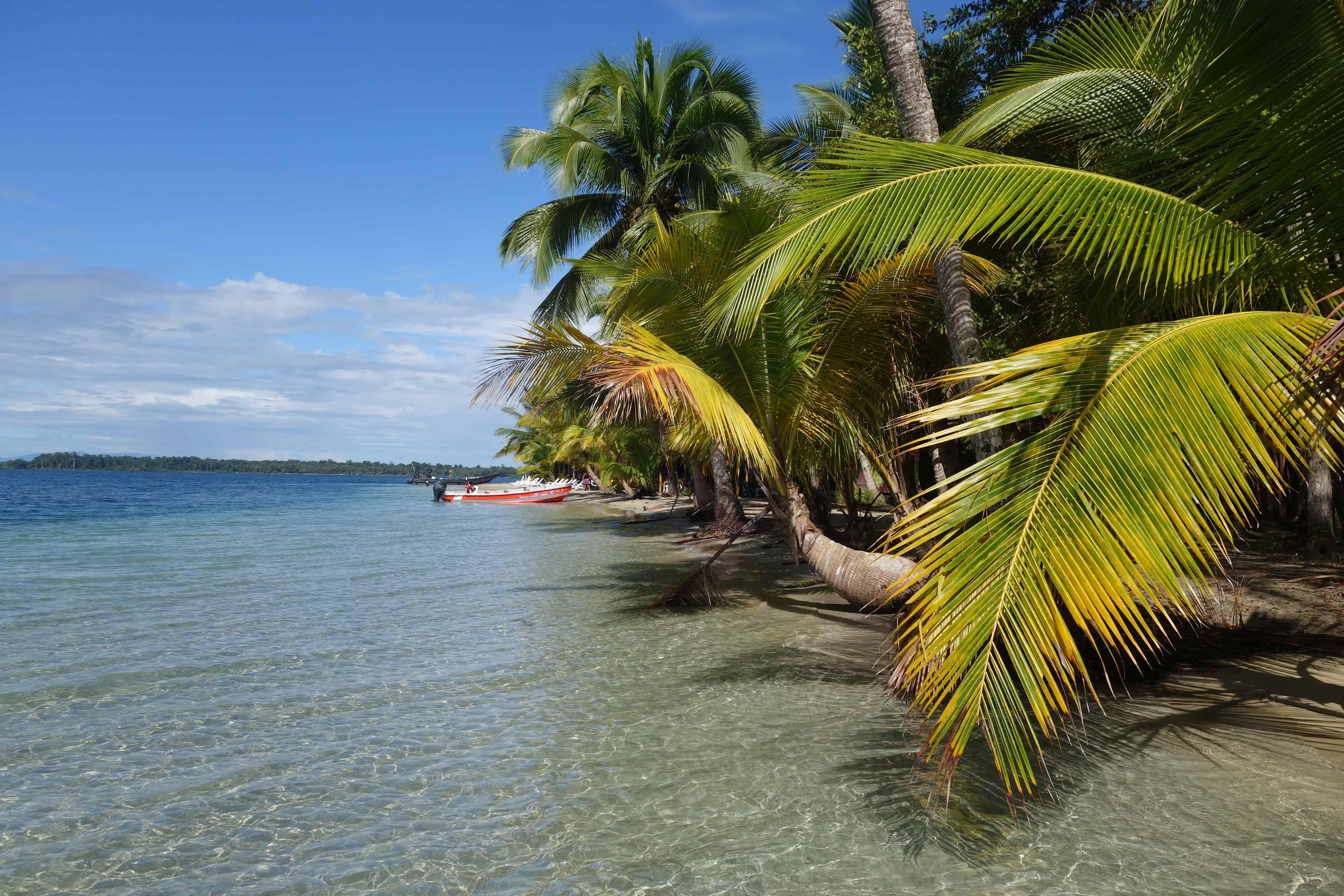Panama reizen starfish beach panama