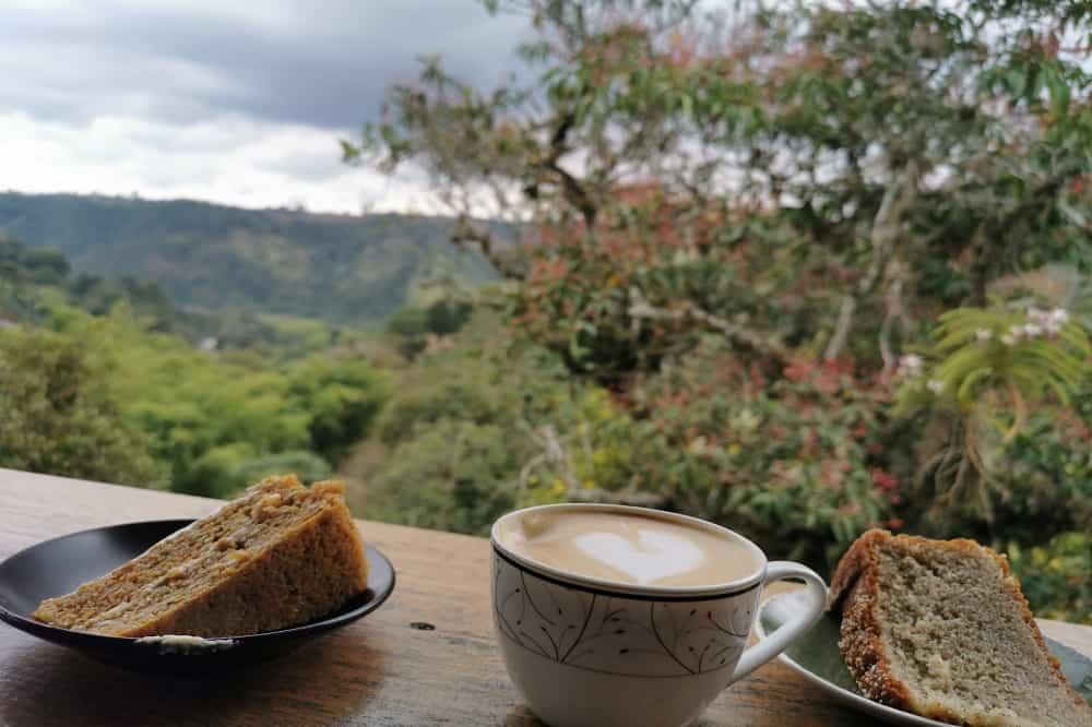 Reisverslag colombia koffie