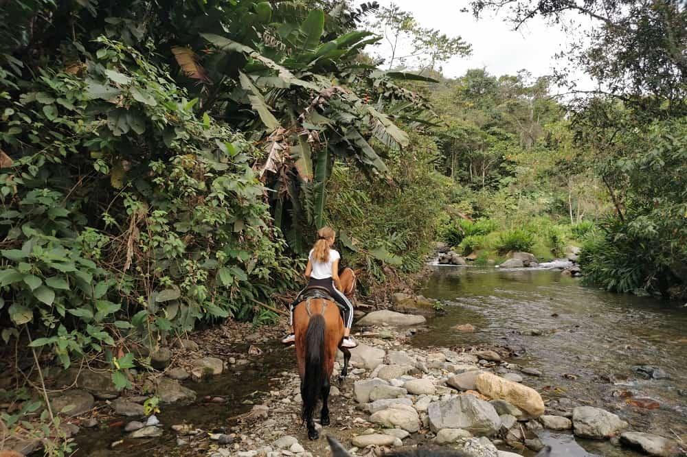 Reisverslag Colombia Salento Paardrijden