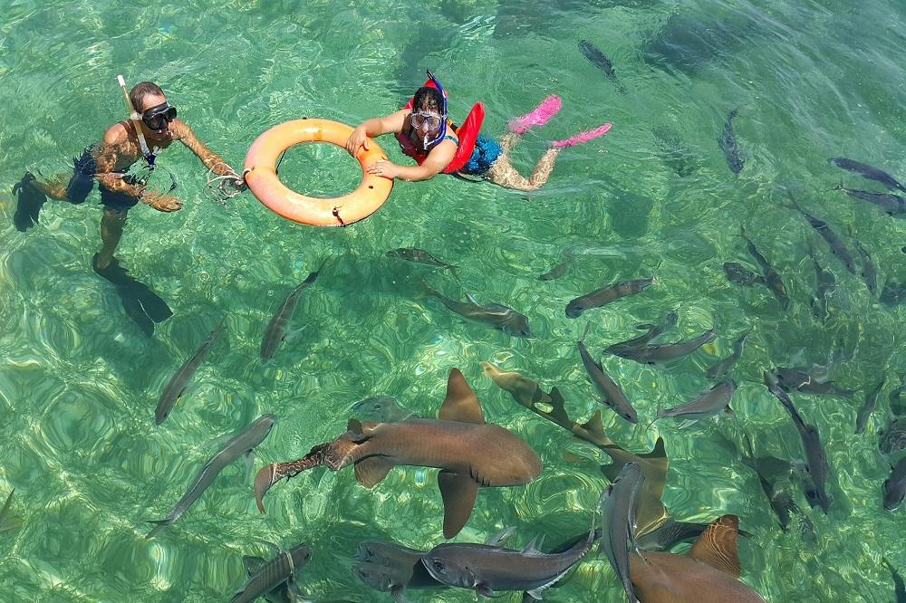 Shark Ray Alley Belize luze reis