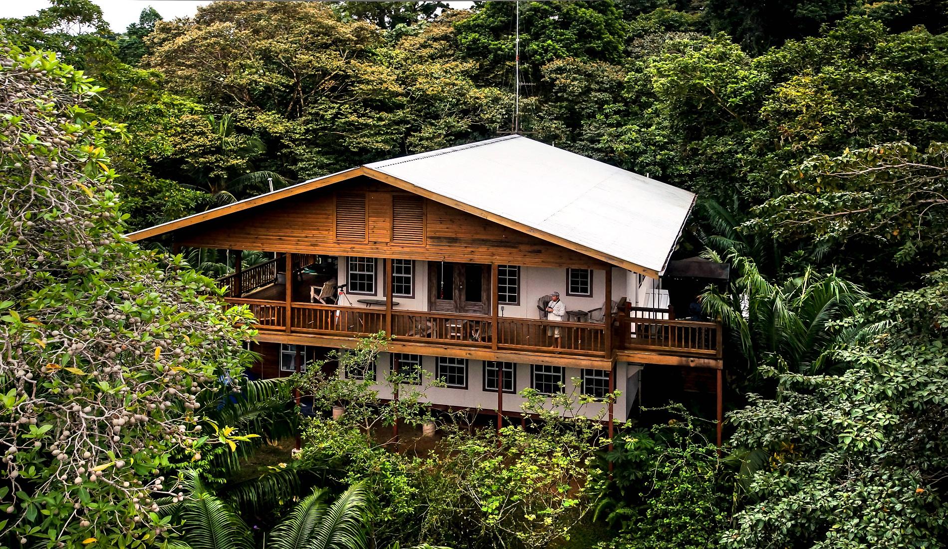Vogelreis Panama Tranquilo Bay Lodge
