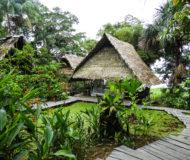 Amazone (fotocredits ProColombia)
