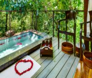 Accommodatie Arenal