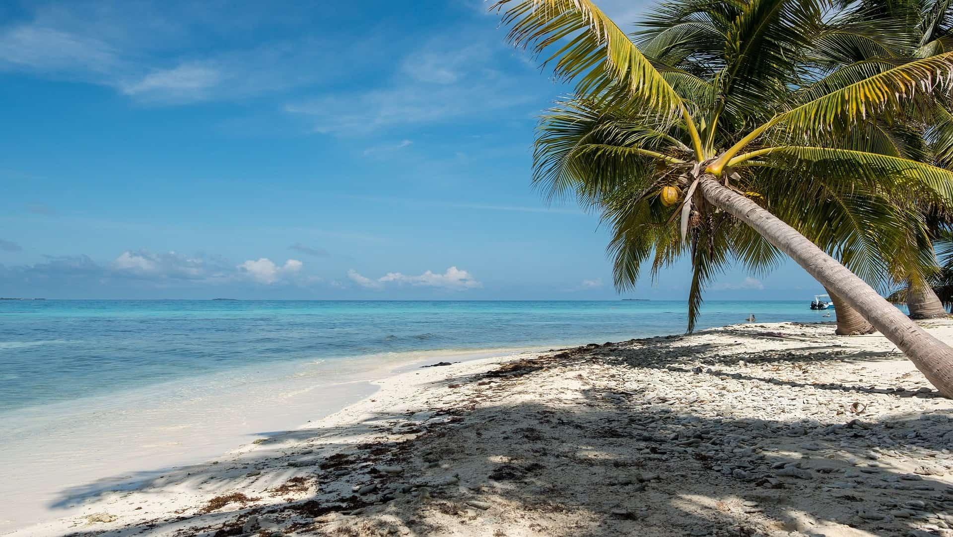 belize reizen tropisch strand