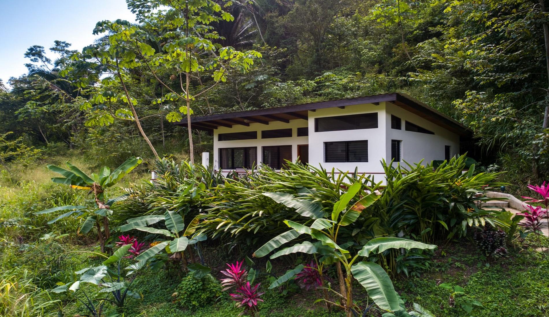 cabin regenwoud