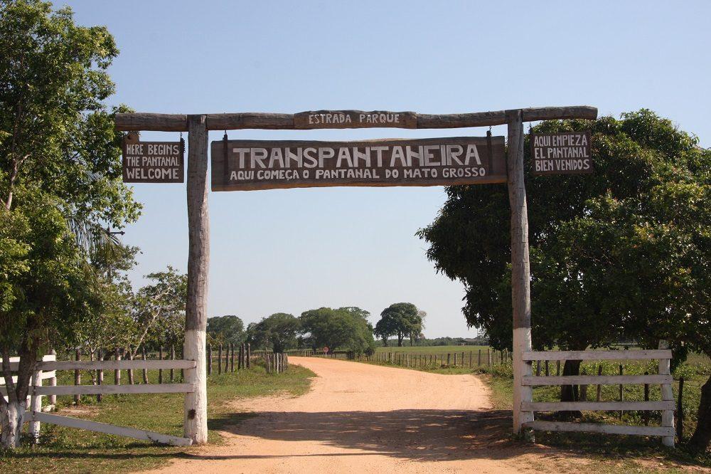 Begin van de Transpanteinera