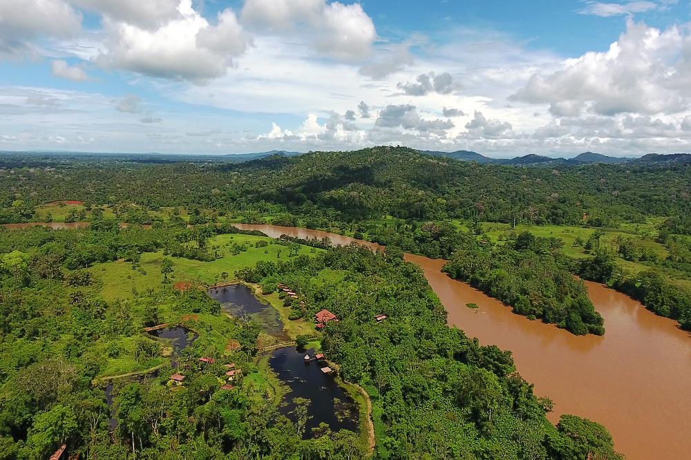 Boca Tapada regenwoud