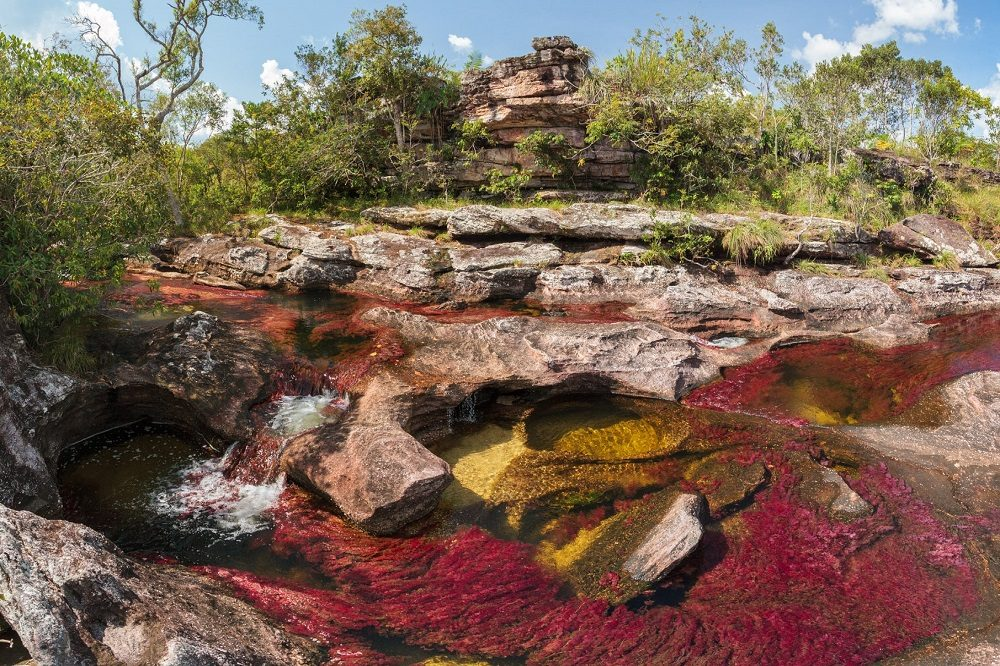 Cano Cristales fotoreis colombia