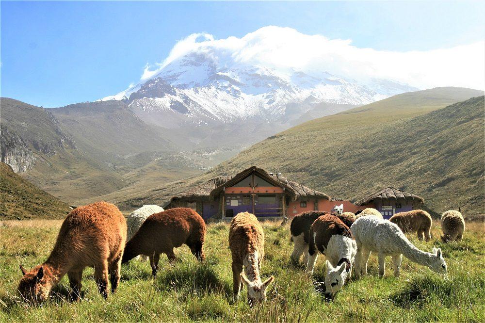 Chimborazo vulkaan