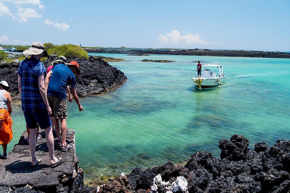Galapagos excursie vanuit isabela