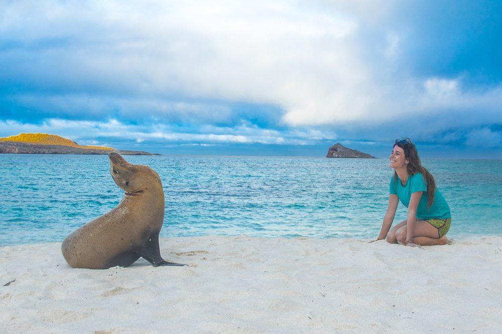 Galapagos excursions zeeleeuw