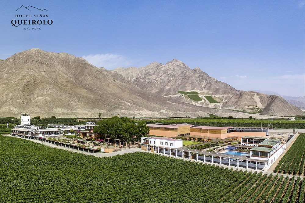Ica wijngaard