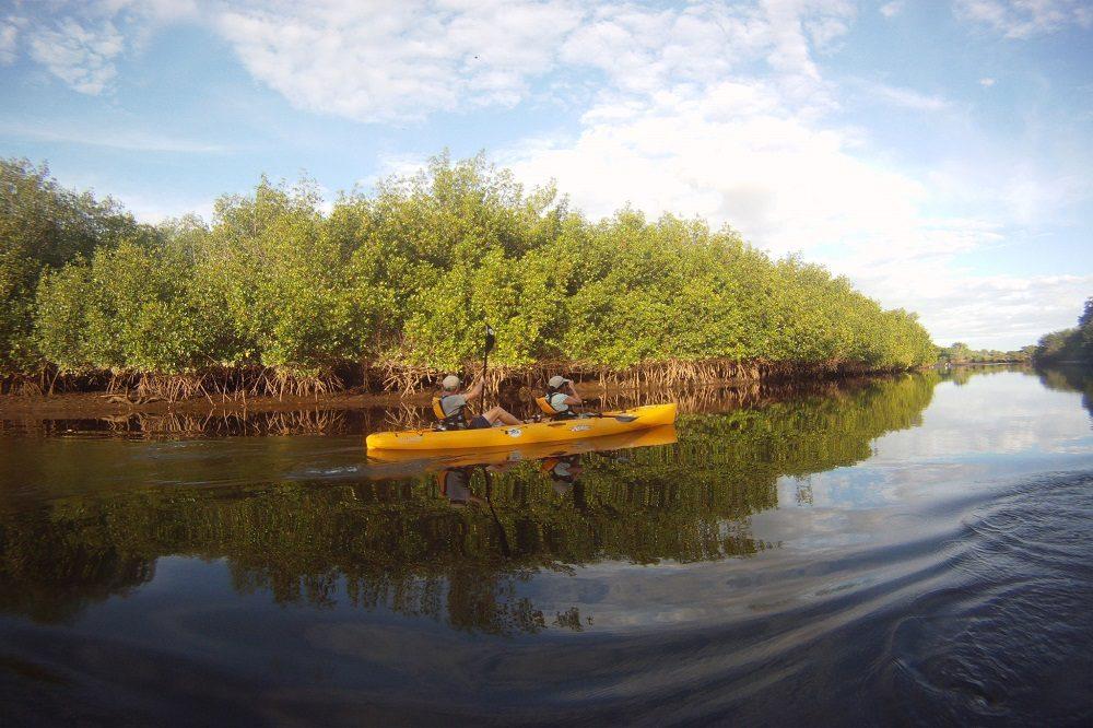 Kayak Bahia Jiquilisco